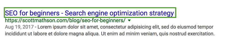 SEO Beginner's Guide - Page Title in Google SERP
