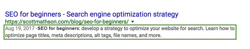 SEO Beginner's Guide - Meta Description in Google SERP