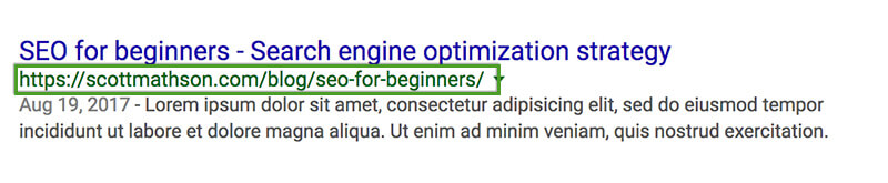 SEO Beginner's Guide - Semantic URL in Google SERP